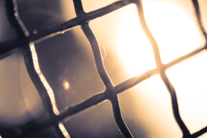 Sun peeks from behind a chain link fence